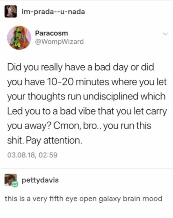 Text - im-prada--u-nada Paracosm @WompWizard Did you really have a bad day or did you have 10-20 minutes where you let your thoughts run undisciplined which Led you to a bad vibe that you let carry you away? Cmon, bro.. you run this shit. Pay attention. 03.08.18, 02:59 pettydavis this is a very fifth eye open galaxy brain mood