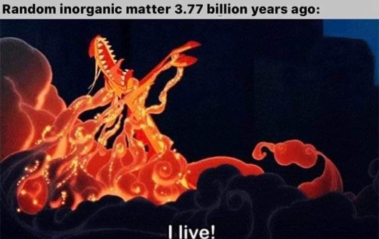 Organism - Random inorganic matter 3.77 billion years ago: I live!