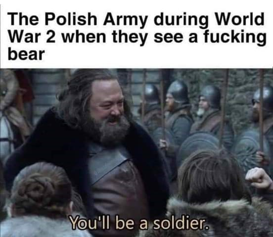 People - The Polish Army during World War 2 when they see a fucking bear You'll be a soldier.