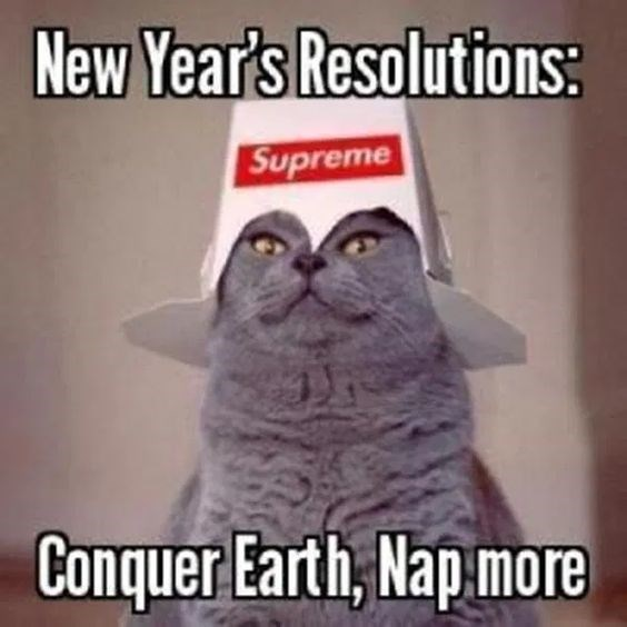 Cat - New Year's Resolutions: Supreme Conquer Earth, Nap more