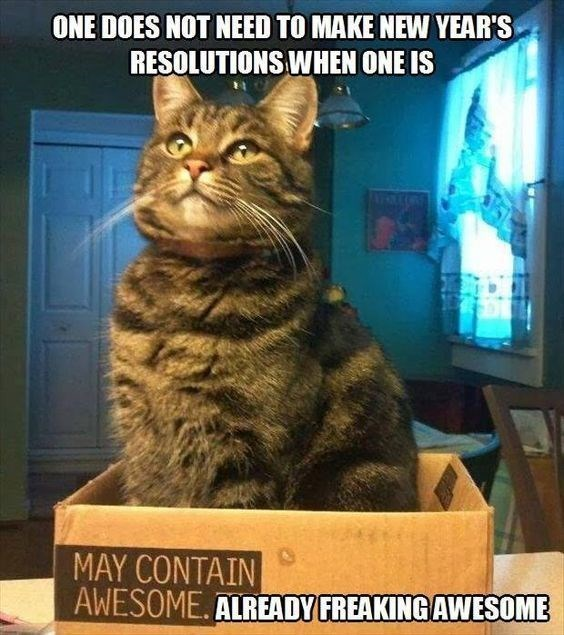 Cat - ONE DOES NOT NEED TO MAKE NEW YEAR'S RESOLUTIONS WHEN ONE IS MAY CONTAIN AWESOME. ALREADY FREAKING AWESOME