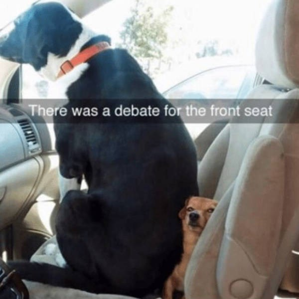 Car seat - There was a debate for the front seat