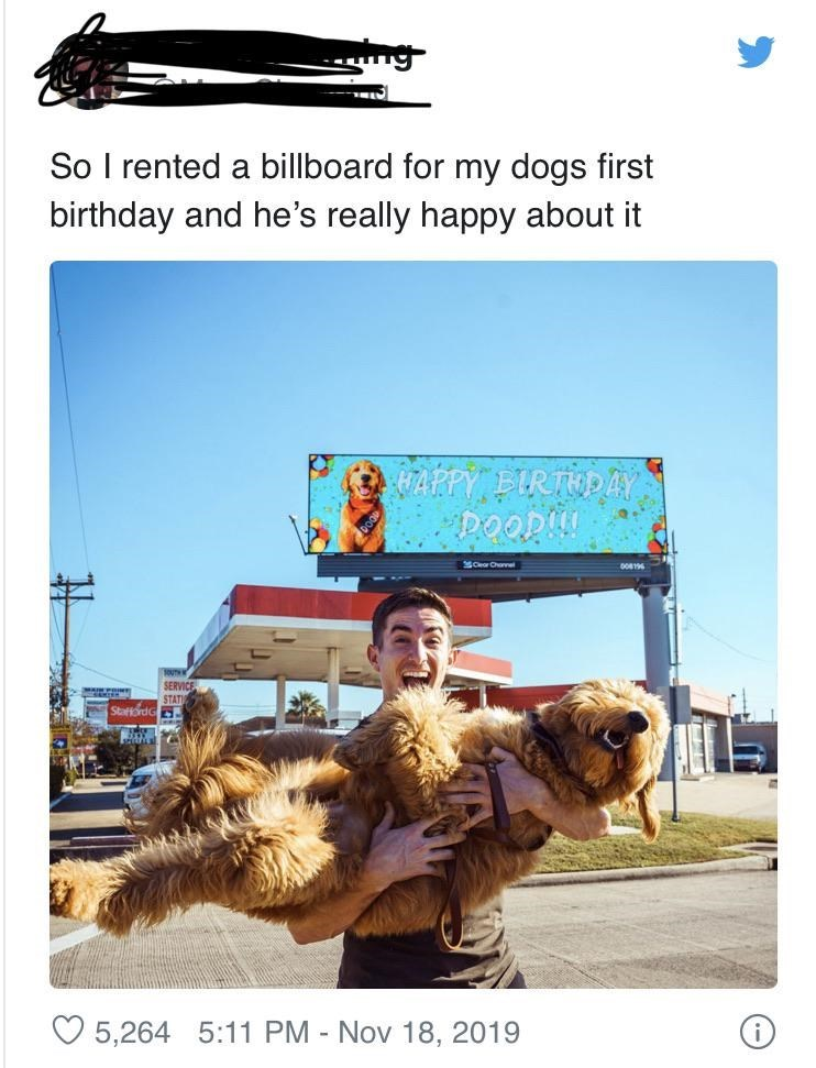 pic of a man laughing while holding a big fluffy dog with both hands, in the background there's a billboard with a photo of the same dog and a birthday message: so i rented a billboard for my dog's first birthday and he's really happy about it