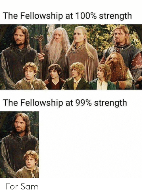 People - The Fellowship at 100% strength The Fellowship at 99% strength For Sam