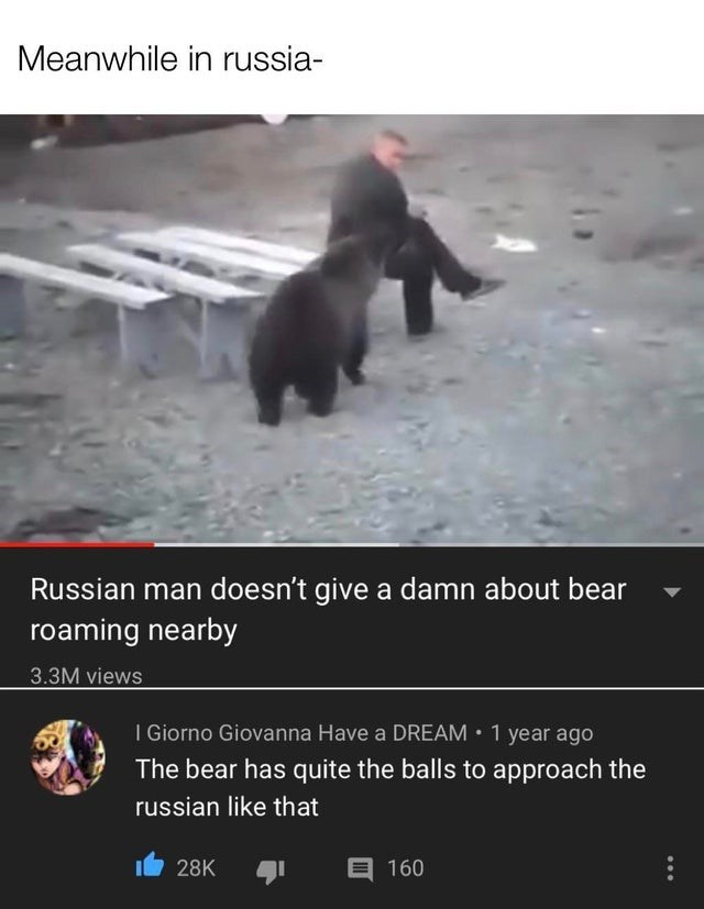 Bear - Meanwhile in russia- Russian man doesn't give a damn about bear roaming nearby 3.3M views I Giorno Giovanna Have a DREAM • 1 year ago The bear has quite the balls to approach the russian like that E 160 28K