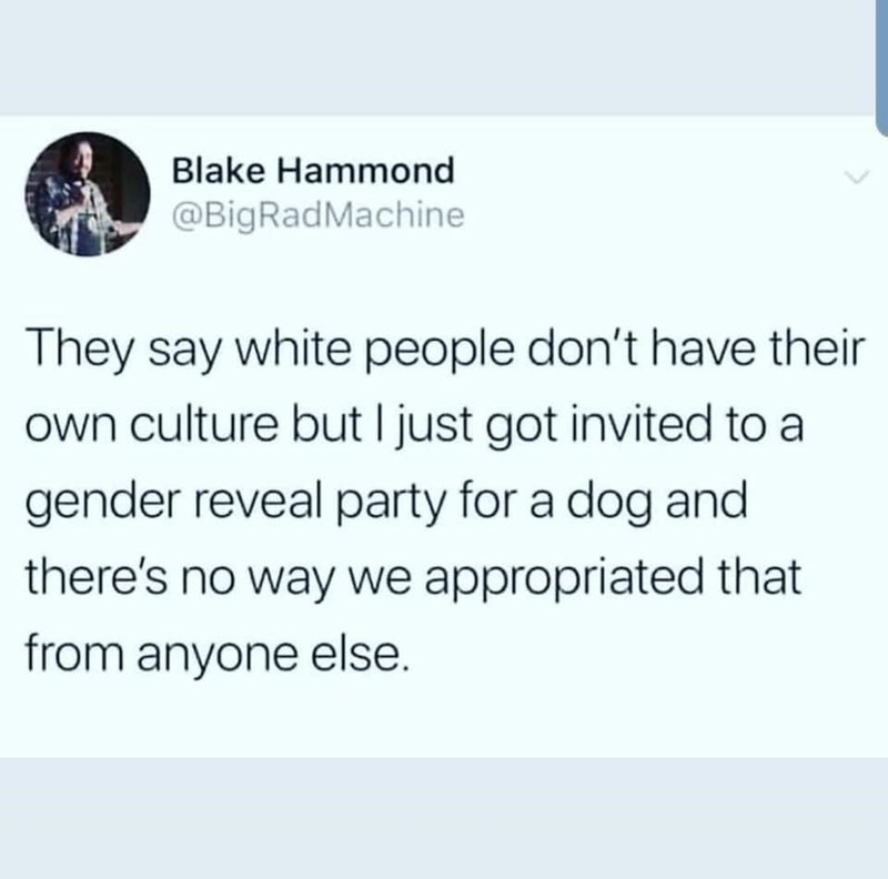 Text - Blake Hammond @BigRadMachine They say white people don't have their own culture but I just got invited to a gender reveal party for a dog and there's no way we appropriated that from anyone else.