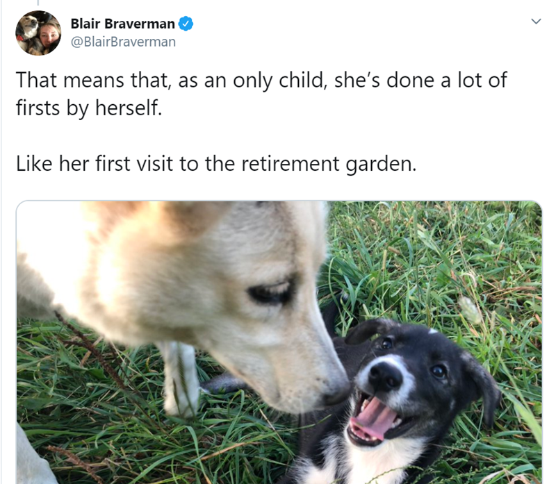 Vertebrate - Blair Braverman @BlairBraverman That means that, as an only child, she's done a lot of firsts by herself. Like her first visit to the retirement garden.