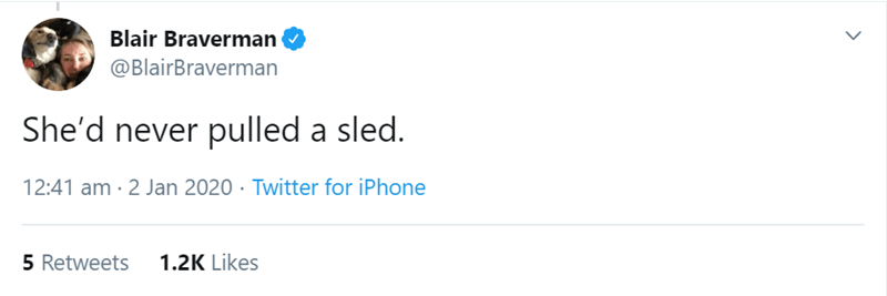 Text - Blair Braverman @BlairBraverman She'd never pulled a sled. 12:41 am · 2 Jan 2020 · Twitter for iPhone 5 Retweets 1.2K Likes