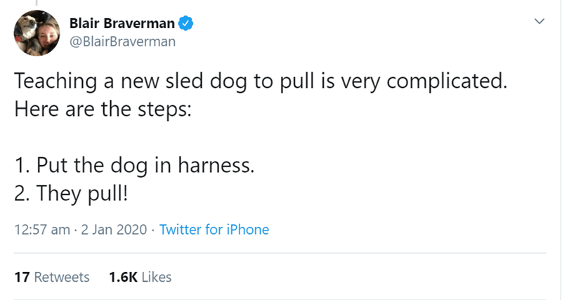 Text - Blair Braverman @BlairBraverman Teaching a new sled dog to pull is very complicated. Here are the steps: 1. Put the dog in harness. 2. They pull! 12:57 am · 2 Jan 2020 · Twitter for iPhone 1.6K Likes 17 Retweets
