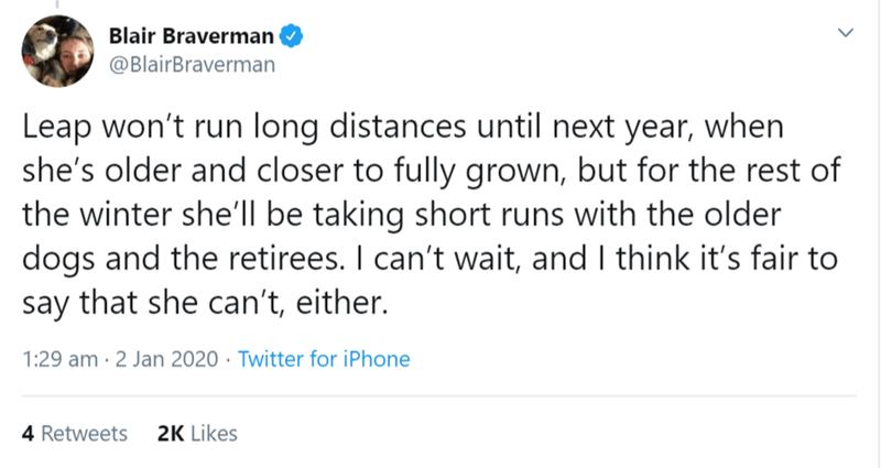Text - Blair Braverman @BlairBraverman Leap won't run long distances until next year, when she's older and closer to fully grown, but for the rest of the winter she'll be taking short runs with the older dogs and the retirees. I can't wait, and I think it's fair to say that she can't, either. 1:29 am · 2 Jan 2020 · Twitter for iPhone 4 Retweets 2K Likes