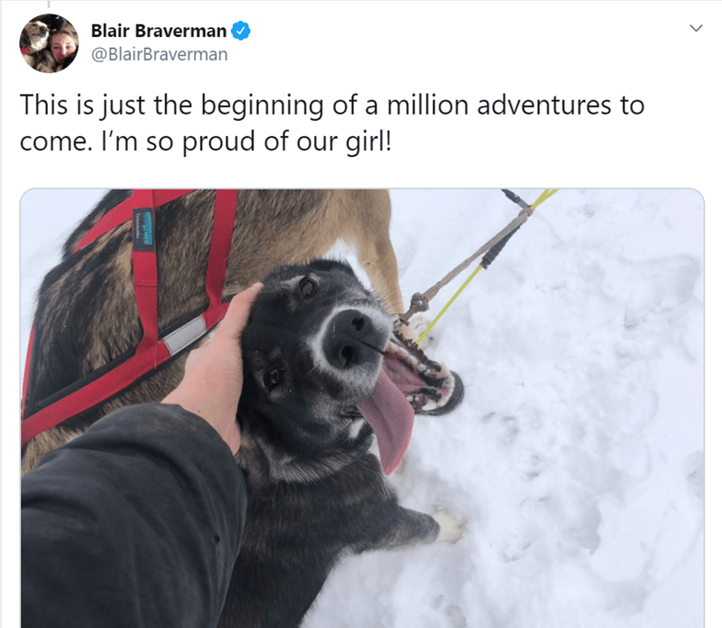 Dog breed - Blair Braverman @BlairBraverman This is just the beginning of a million adventures to come. I'm so proud of our girl! TAILAALAA