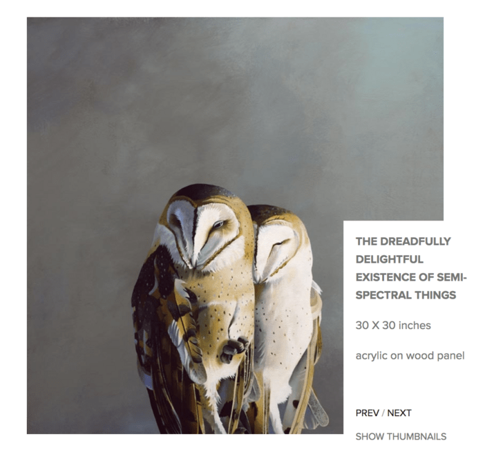 Barn owl - THE DREADFULLY DELIGHTFUL EXISTENCE OF SEMI- SPECTRAL THINGS 30 X 30 inches acrylic on wood panel PREV / NEXT SHOW THUMBNAILS