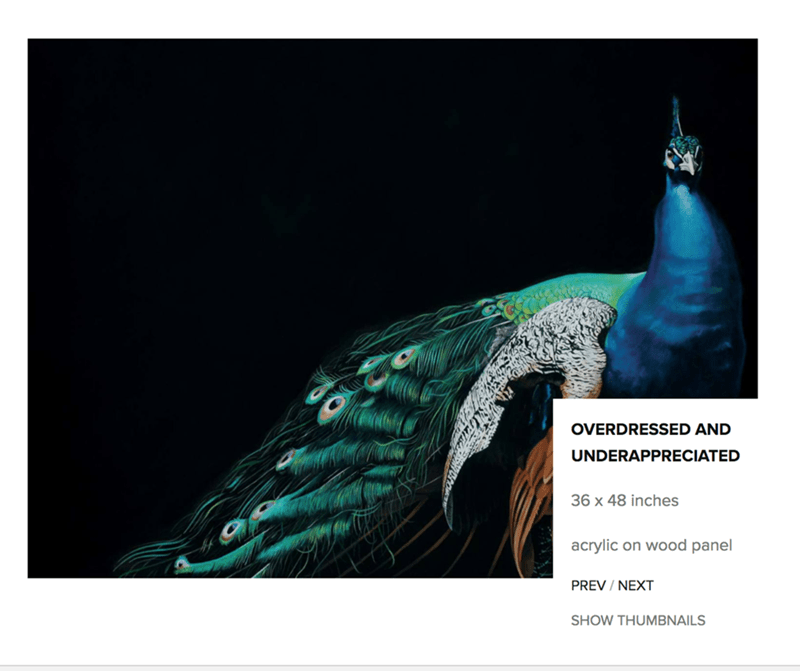 Peafowl - OVERDRESSED AND UNDERAPPRECIATED 36 x 48 inches acrylic on wood panel PREV / NEXT SHOW THUMBNAILS