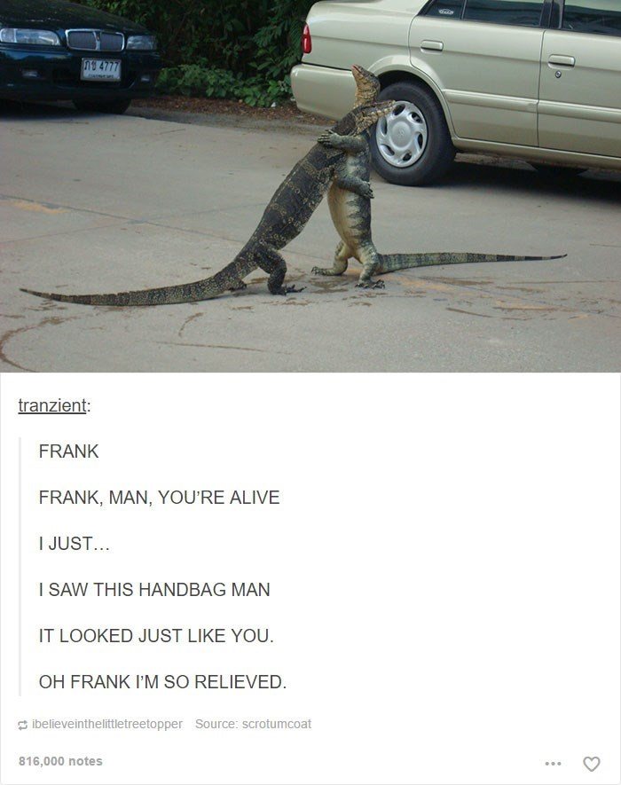 Vehicle - 9 4777 tranzient: FRANK FRANK, MAN, YOU'RE ALIVE I JUST... I SAW THIS HANDBAG MAN IT LOOKED JUST LIKE YOU. OH FRANK I'M SO RELIEVED. 3 ibelieveinthelittletreetopper Source: scrotumcoat 816,000 notes