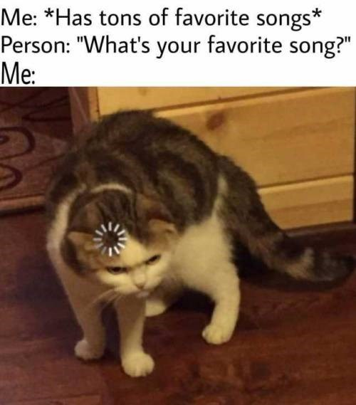 """Cat - Me: *Has tons of favorite songs* Person: """"What's your favorite song?"""" Me:"""