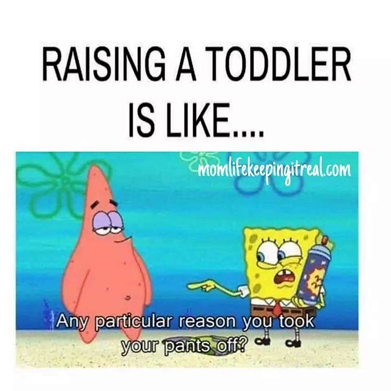 Cartoon - RAISING A TODDLER IS LIKE... Chomlifekcapingireal.com Any particular reason you took your pants off?