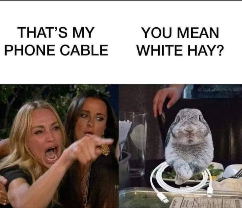 Internet meme - THAT'S MY YOU MEAN PHONE CABLE WHITE HAY? elazybunny.pumpkin