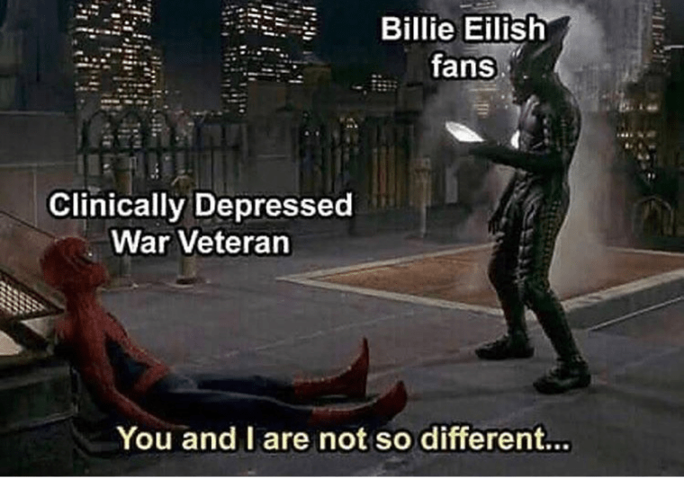 Fictional character - Billie Eilish fans Clinically Depressed War Veteran You and I are not so different...