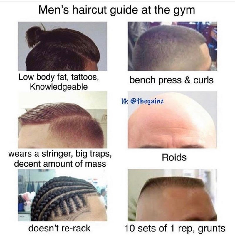 Hair - Men's haircut guide at the gym Low body fat, tattoos, Knowledgeable bench press & curls IG: @thegainz wears a stringer, big traps, decent amount of mass Roids 10 sets of 1 rep, grunts doesn't re-rack
