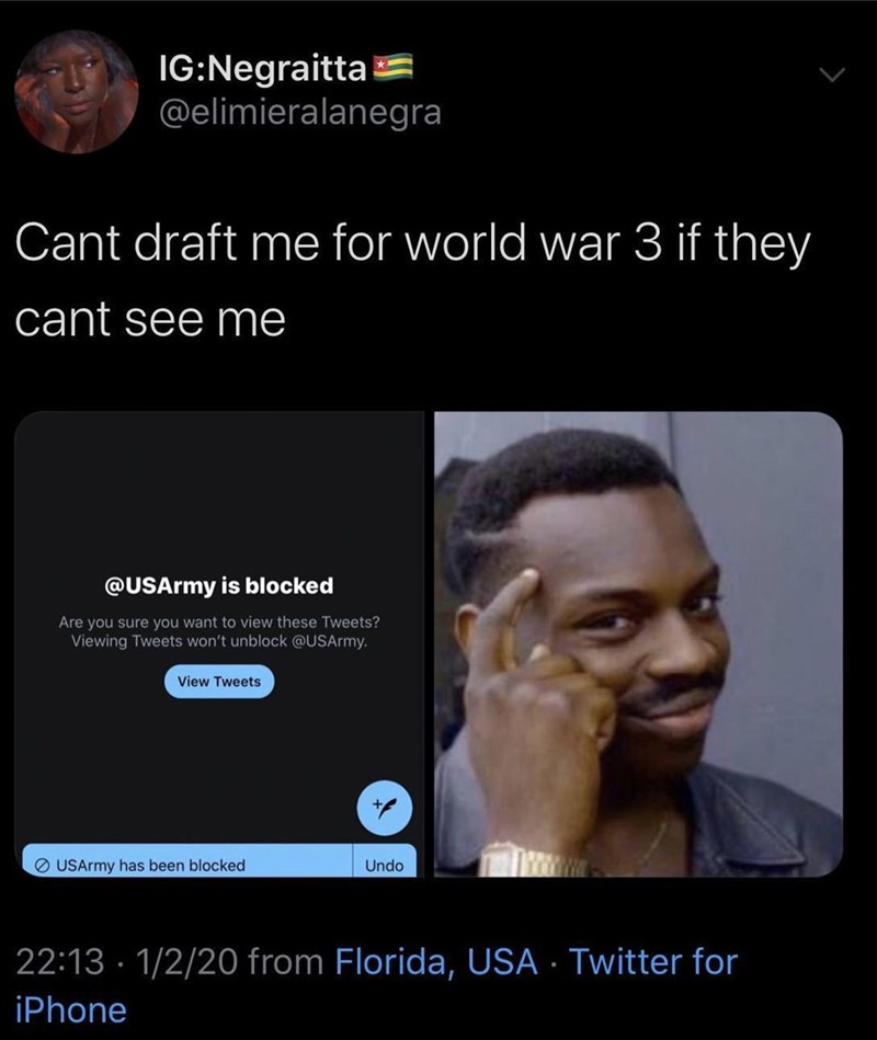 Text - IG:Negraitta @elimieralanegra Cant draft me for world war 3 if they cant see me @USArmy is blocked Are you sure you want to view these Tweets? Viewing Tweets won't unblock @USArmy. View Tweets O USArmy has been blocked Undo 22:13 · 1/2/20 from Florida, USA · Twitter for iPhone