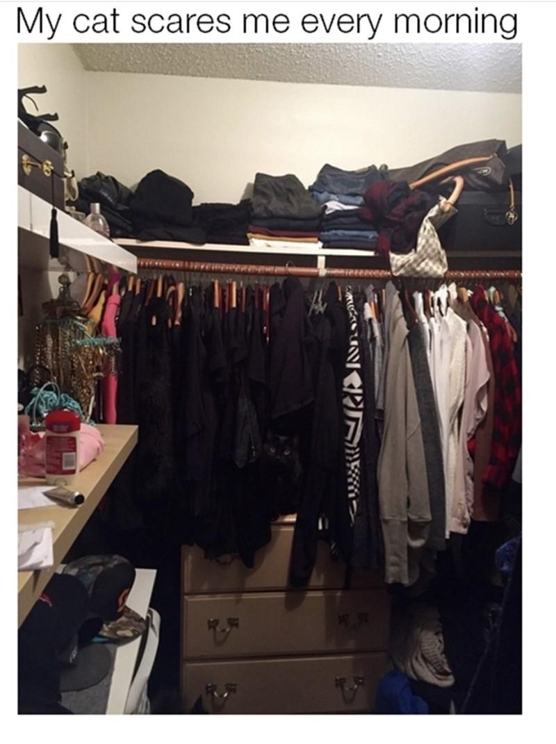 Closet - My cat scares me every morning