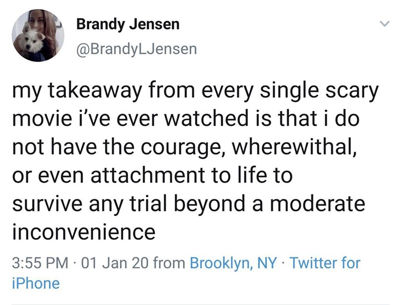 Text - Brandy Jensen @BrandyLJensen my takeaway from every single scary movie i've ever watched is that i do not have the courage, wherewithal, or even attachment to life to survive any trial beyond a moderate inconvenience 3:55 PM · 01 Jan 20 from Brooklyn, NY Twitter for iPhone