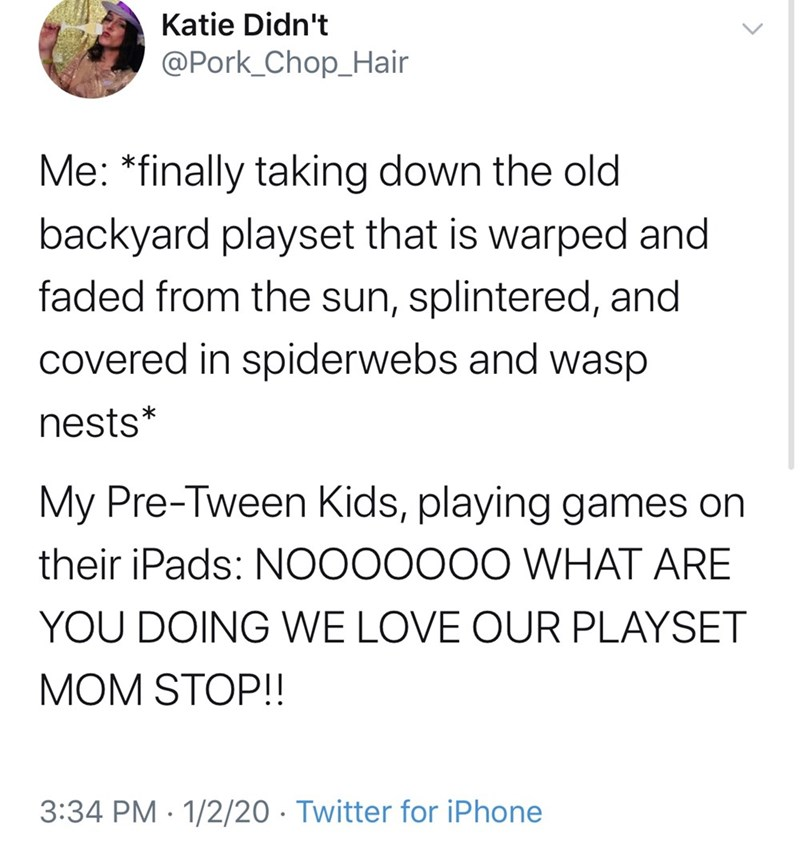 Text - Katie Didn't @Pork_Chop_Hair Me: *finally taking down the old backyard playset that is warped and faded from the sun, splintered, and covered in spiderwebs and wasp nests* My Pre-Tween Kids, playing games on their iPads: NOO00000 WHAT ARE YOU DOING WE LOVE OUR PLAYSET MOM STOP!! 3:34 PM · 1/2/20 · Twitter for iPhone