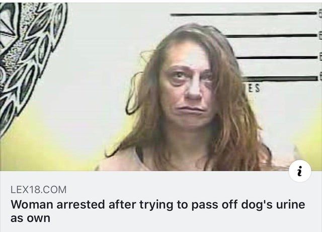 Face - ES LEX18.COM Woman arrested after trying to pass off dog's urine as own