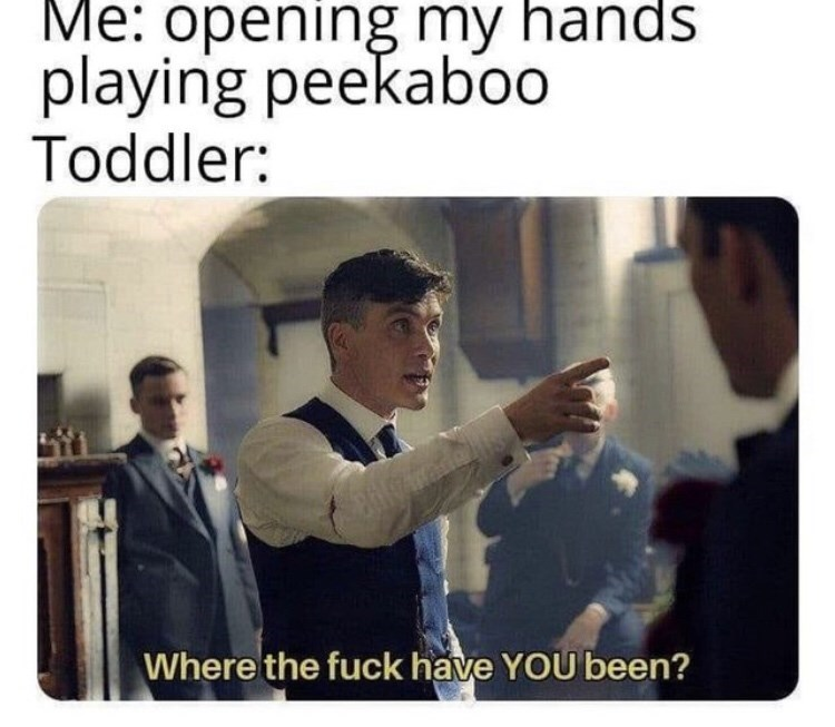 Text - Me: opening my hands playing peekaboo Toddler: Where the fuck have YOU been?