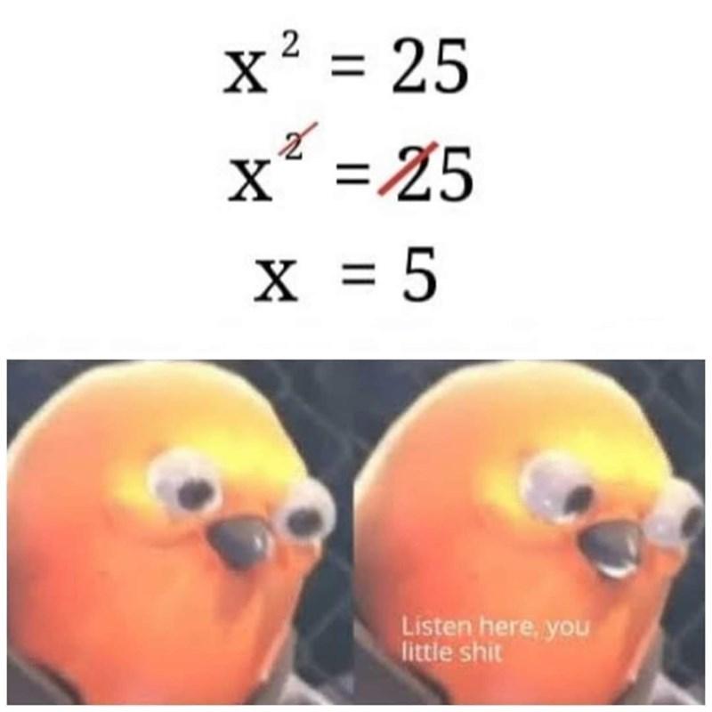 Nose - x' = 25 X* =25 х х %3D5 Listen here, you little shit