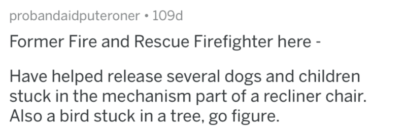 Text - probandaidputeroner • 109d Former Fire and Rescue Firefighter here - Have helped release several dogs and children stuck in the mechanism part of a recliner chair. Also a bird stuck in a tree, go figure.