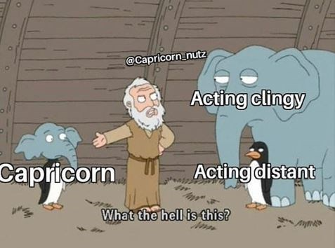 Cartoon - @Capricorn_nutz Acting clingy Capricorn Acting distant What the hell is this?