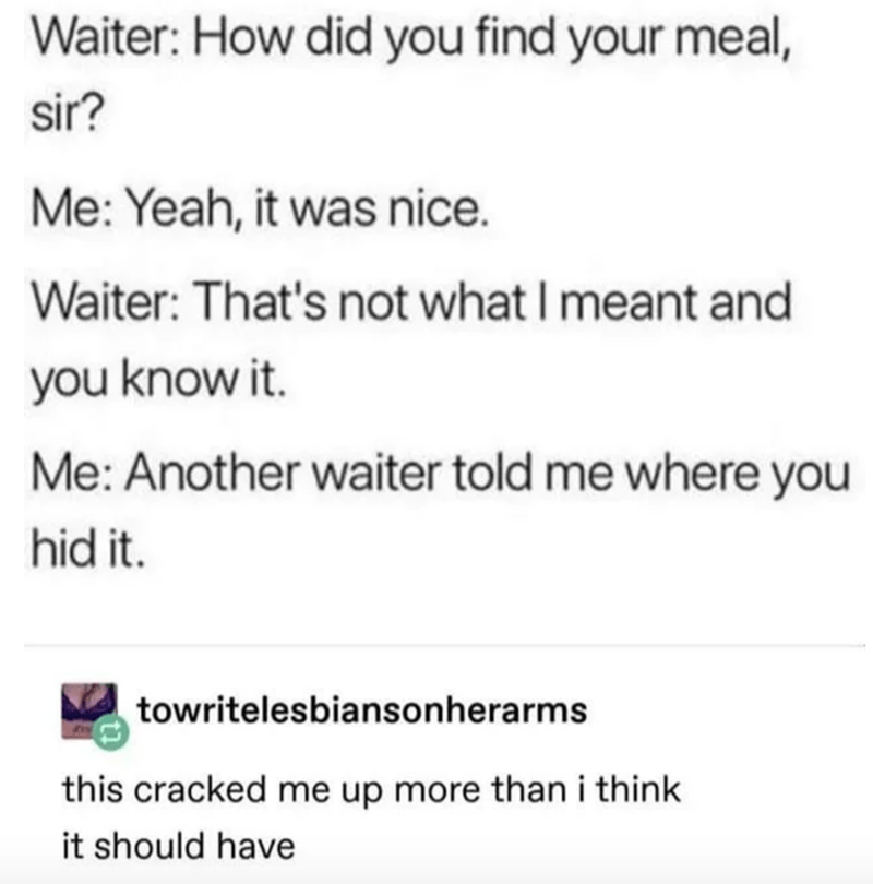 Text - Waiter: How did you find your meal, sir? Me: Yeah, it was nice. Waiter: That's not what I meant and you know it. Me: Another waiter told me where you hid it. towritelesbiansonherarms this cracked me up more than i think it should have