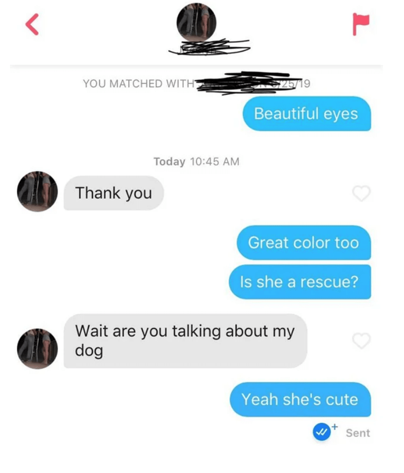 Text - YOU MATCHED WITH 25719 Beautiful eyes Today 10:45 AM Thank you Great color too Is she a rescue? Wait are you talking about my dog Yeah she's cute Sent
