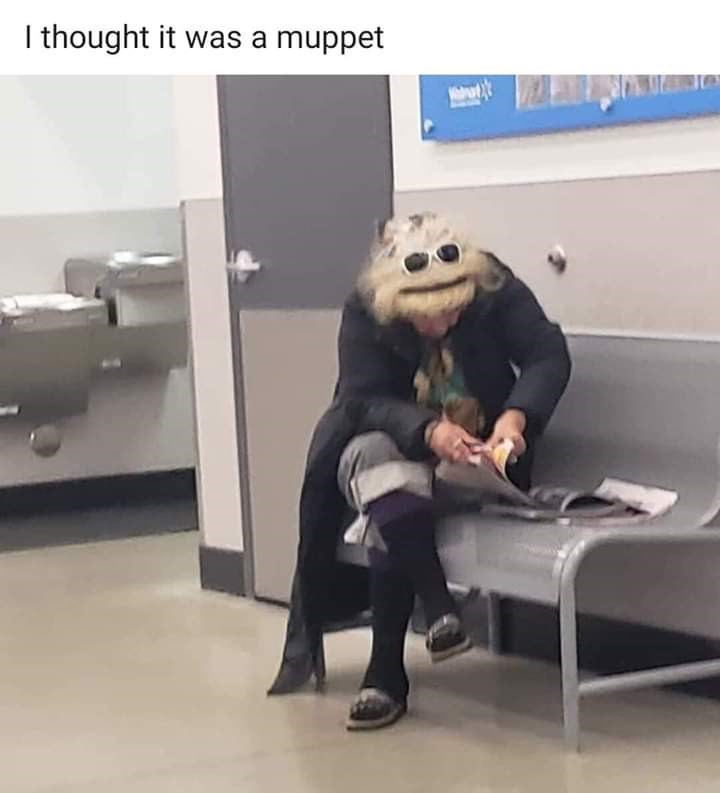 Sitting - I thought it was a muppet