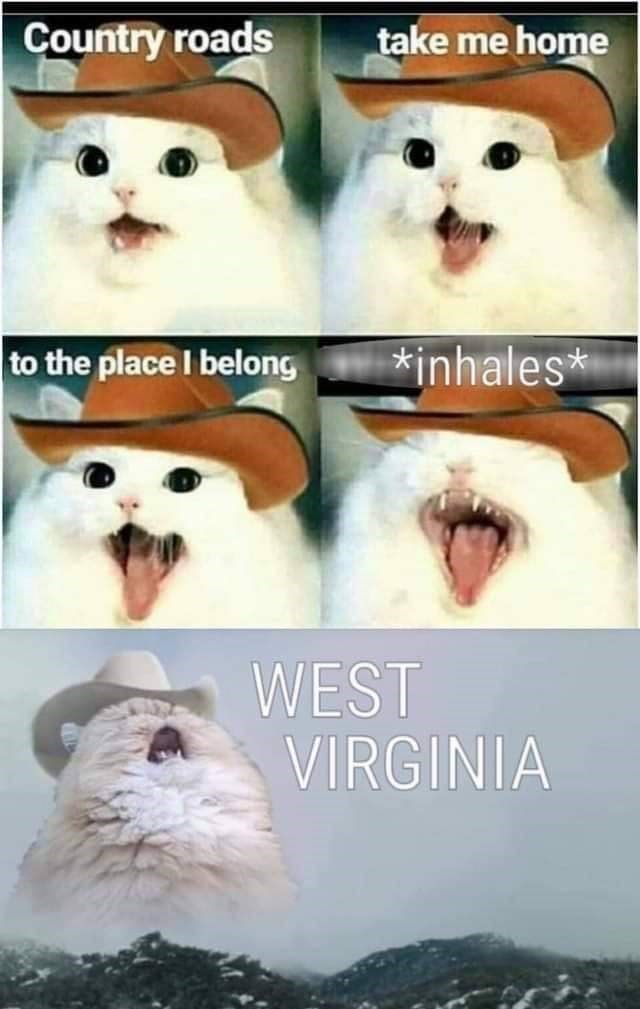 Nose - Country roads take me home *inhales* to the place I belong WEST VIRGINIA