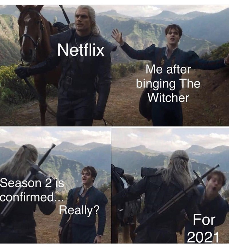 Sky - Netflix Me after binging The Witcher Season 2 is confirmed... Really? For 2021