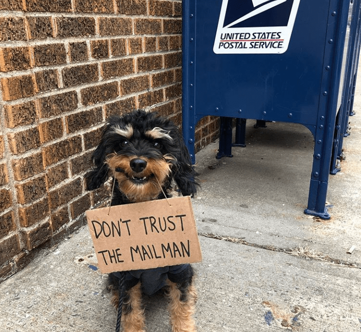 Dog - UNITED STATES POSTAL SERVICE. DON'T TRUST - THE MAILMAN