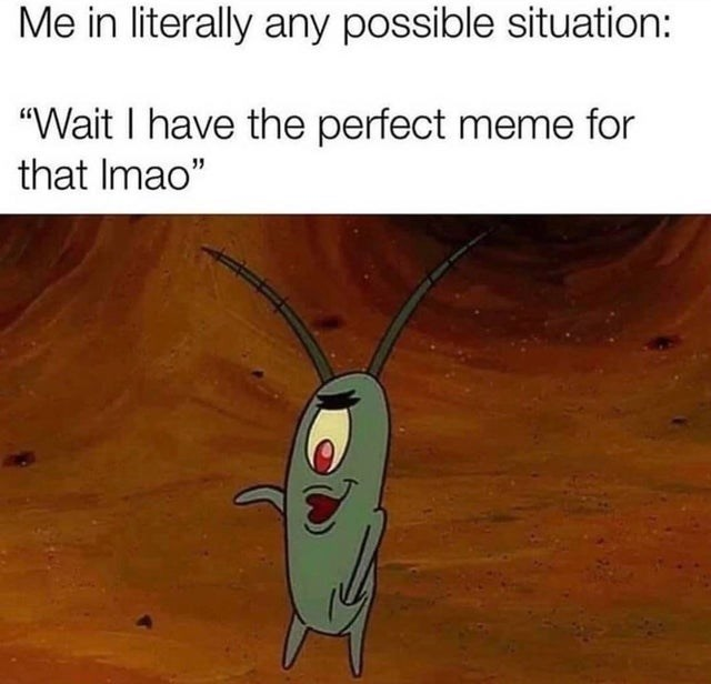 """Insect - Me in literally any possible situation: """"Wait I have the perfect meme for that Imao"""""""