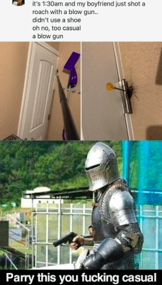 Helmet - it's 1:30am and my boyfriend just shot a roach with a blow gun. didn't use a shoe oh no, too casual a blow gun Parry this you fucking casual