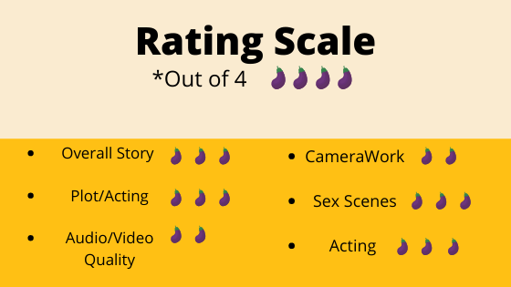 Text - Rating Scale *Out of 4 Overall Story • CameraWork Plot/Acting Sex Scenes Audio/Video Acting Quality