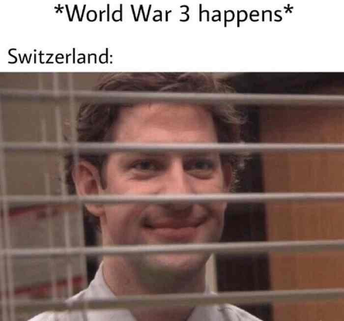 Face - *World War 3 happens* Switzerland:
