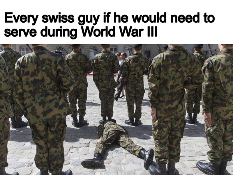Soldier - Every swiss guy if he would need to serve during World War III
