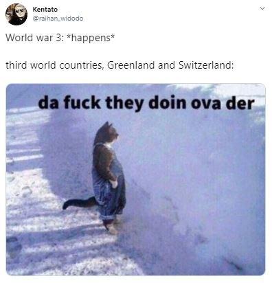 Adaptation - Kentato @raihan_widodo World war 3: *happens* third world countries, Greenland and Switzerland: da fuck they doin ova der