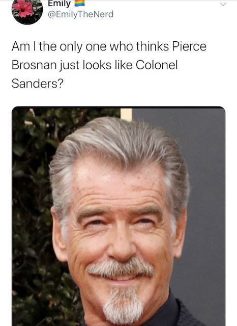 Face - Emily @EmilyTheNerd Am I the only one who thinks Pierce Brosnan just looks like Colonel Sanders?
