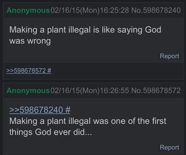 Text - Anonymous 02/16/15(Mon)16:25:28 No.598678240 Making a plant illegal is like saying God was wrong Report >>598678572 # Anonymous 02/16/15(Mon)16:26:55 No.598678572 >>598678240 # Making a plant illegal was one of the first things God ever did... Report