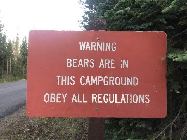 Text - WARNING BEARS ARE IN THIS CAMPGROUND OBEY ALL REGULATIONS