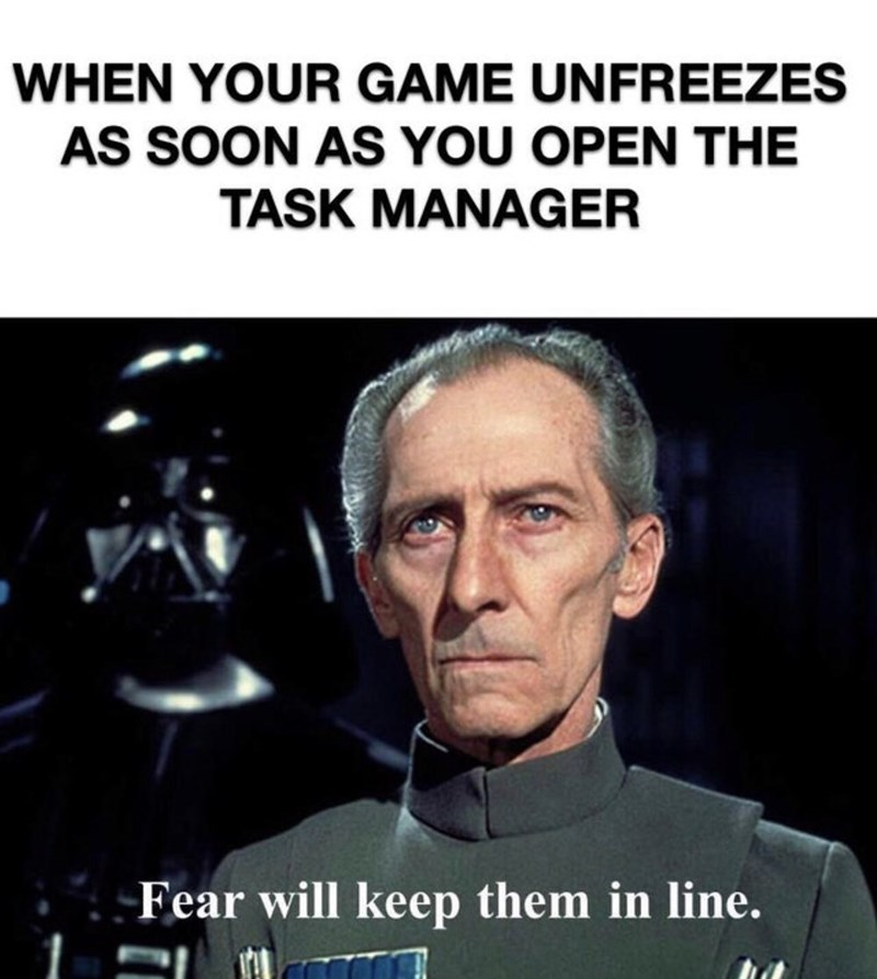 Photo caption - WHEN YOUR GAME UNFREEZES AS SOON AS YOU OPEN THE TASK MANAGER Fear will keep them in line.