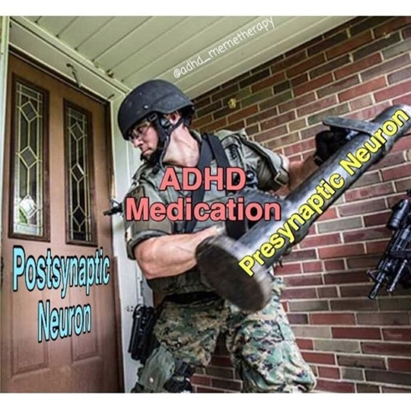 Cool - @adhd_memetherapy KADHD Medication Possan, Newan Presynaptic Neuron