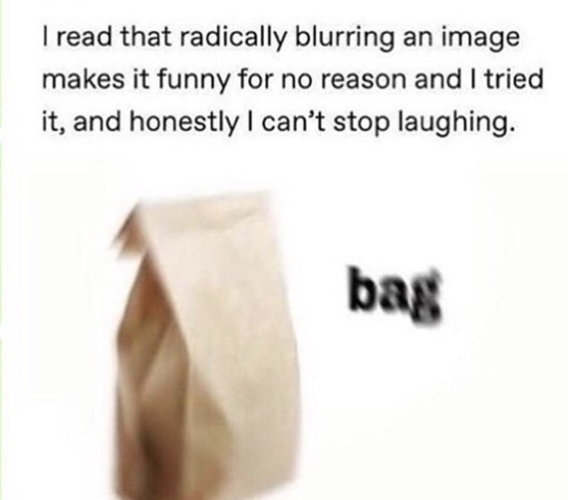 Text - I read that radically blurring an image makes it funny for no reason and I tried it, and honestly I can't stop laughing. bag